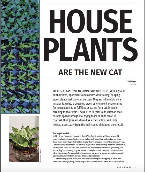 House Plant Article
