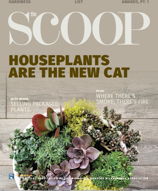 House Plant Cover